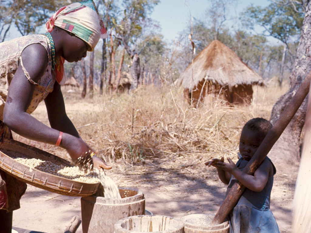 Zambia ok.jpg
