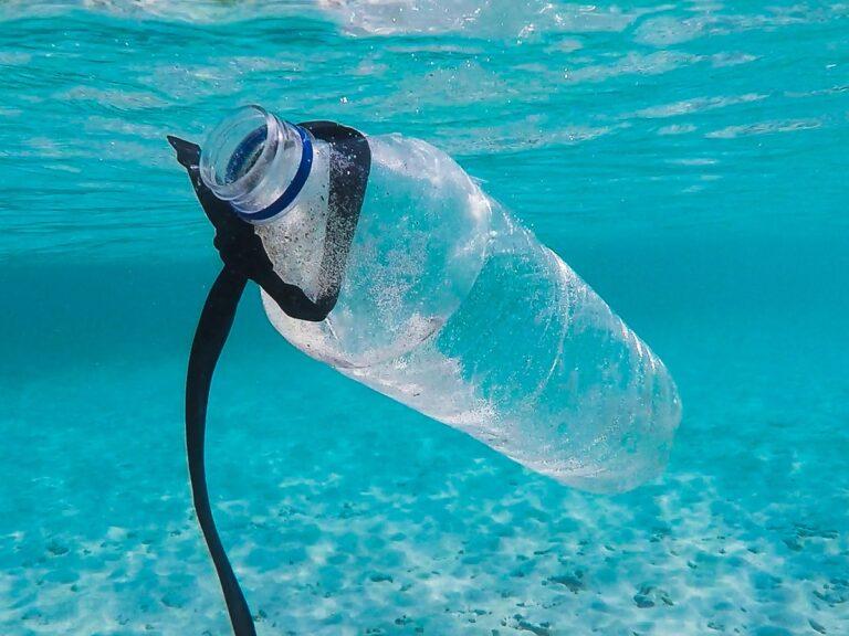 Life beyond plastic