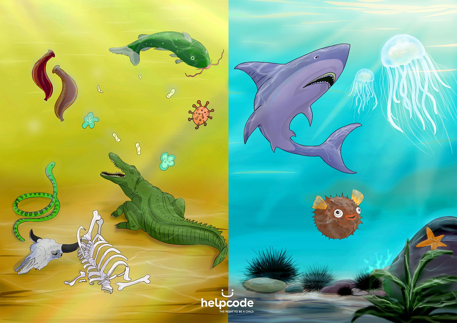 Illustrazioni degli animali che si trovano sott'acqua